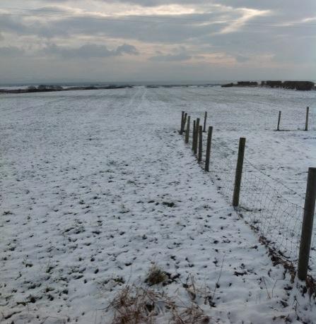farm_in_snow2