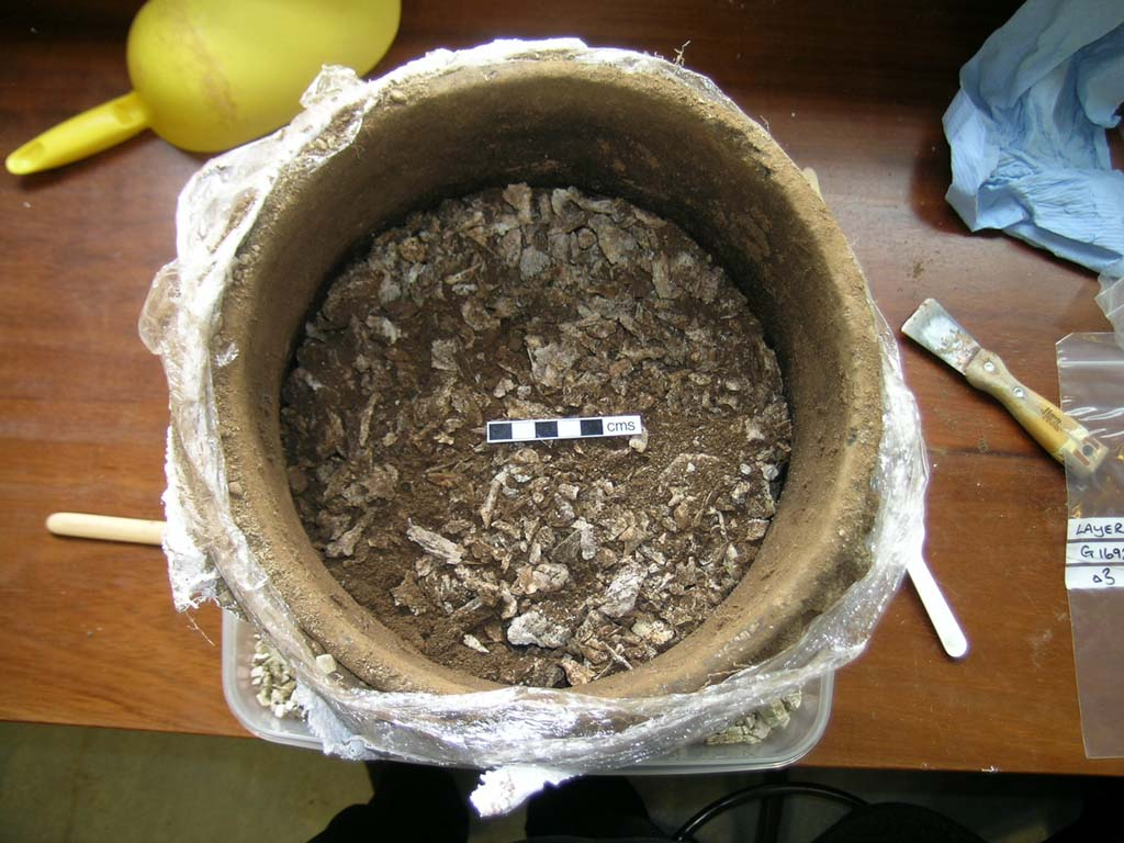 cremated_bone_inside_urn